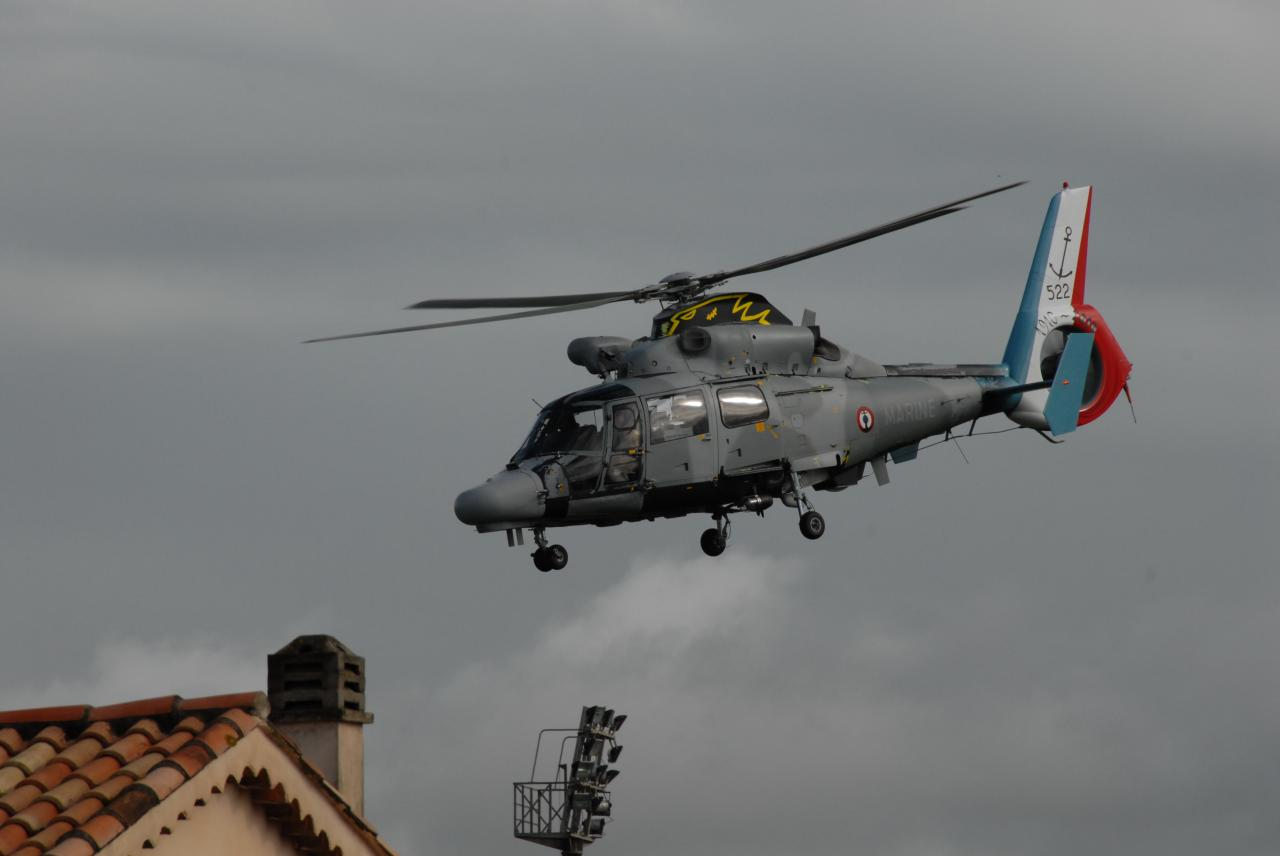 Helicoptere 2010